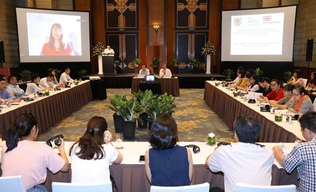 Le Vietnam et le Royaume-Uni partagent des experiences dans l'evaluation des effets des politiques hinh anh 1