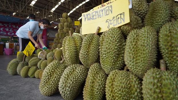 Forte hausse des exportations de durian thailandais vers la Chine hinh anh 1