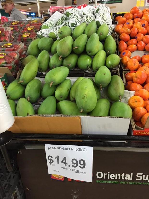 La mangue verte du Vietnam est bien appreciee en Australie hinh anh 1
