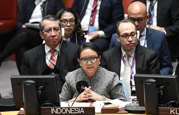 Conseil de securite : l'Indonesie appelle a maintenir la paix pendant la pandemie de COVID-19 hinh anh 1