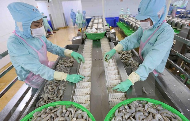 Exportations de 26,1 milliards de dollars de produits agro-sylvicole et aquatique en huit mois hinh anh 1