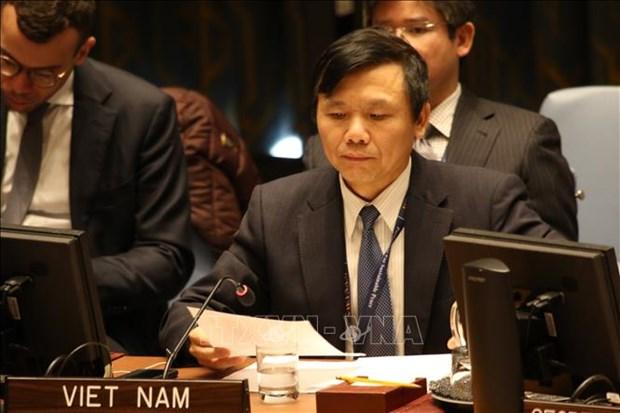 Conseil de securite: le Vietnam appelle a renforcer les efforts en reponse de COVID-19 hinh anh 1