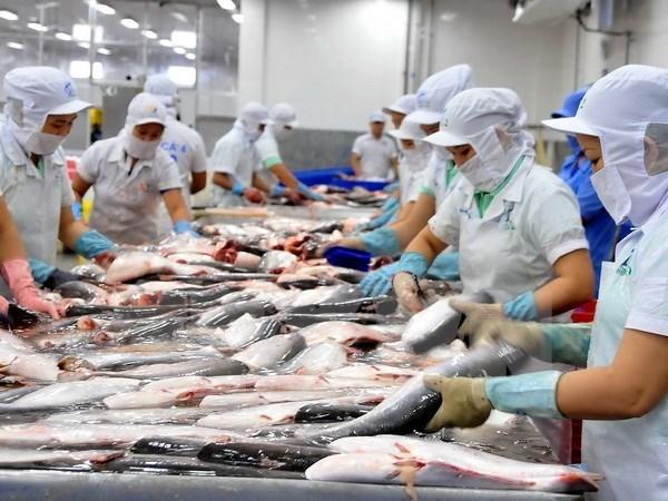 Douze entreprises vietnamiennes autorisees a exporter des produits aquatiques vers l'Arabie saoudite hinh anh 1
