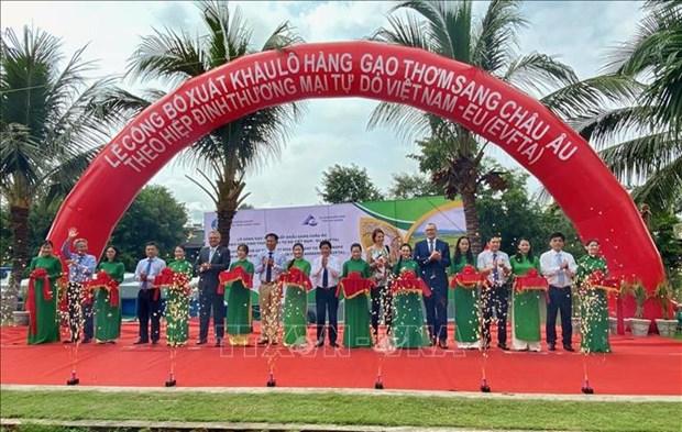 EVFTA : 126 tonnes de riz parfume du Vietnam exportees vers l'Union europeenne hinh anh 1