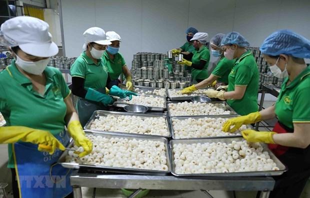 Le Vietnam publie les tarifs preferentiels de l'EVFTA hinh anh 1