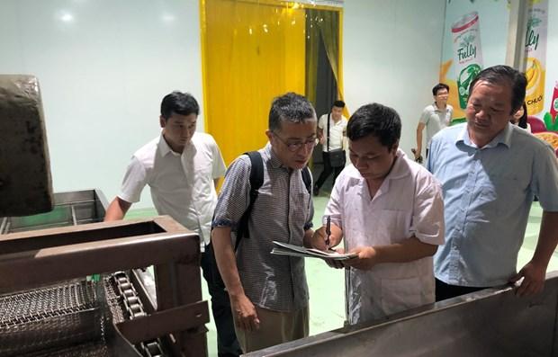 Les premiers lots de litchis vietnamiens exportes au Japon par voie aerienne hinh anh 1