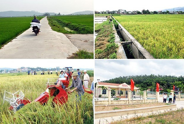 Agriculture : Hanoi fixe l'objectif d'une croissance d'au moins 3% en 2021 hinh anh 1