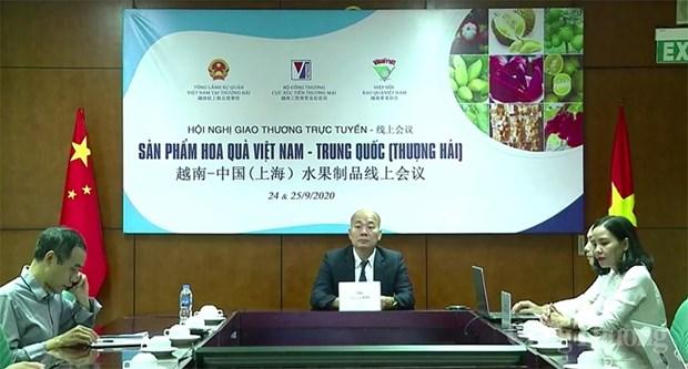 Le Vietnam cherche a stimuler le commerce des fruits avec Shanghai hinh anh 1