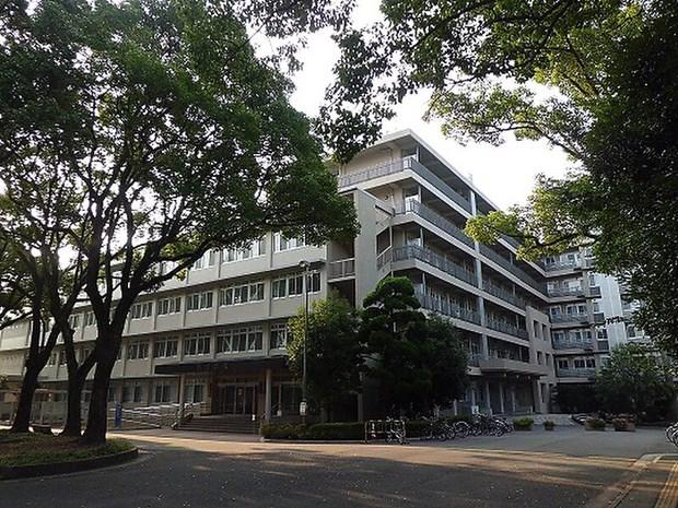 Nagasaki (Japon) cherche a attirer plus d'etudiants vietnamiens hinh anh 1