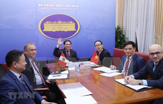 Vietnam et Perou cherchent a dynamiser leur cooperation bilaterale hinh anh 1