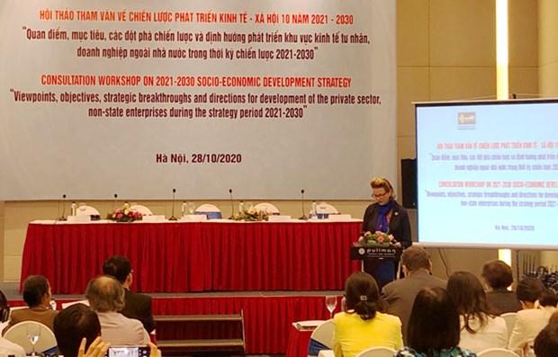 Consultation pour la strategie de developpement socio-economique pour 2021-2030 hinh anh 1