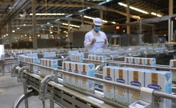 Vinamilk importera 1.000-1.200 vaches des Etats-Unis hinh anh 1