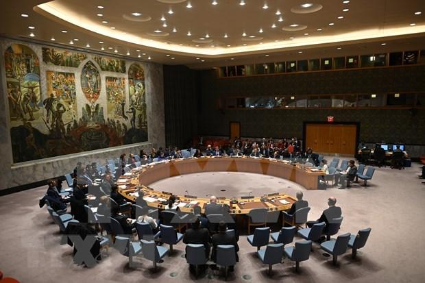 Conseil de securite : le Vietnam appelle a une cooperation pour regler des questions en Syrie hinh anh 1