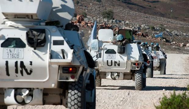 Conseil de securite : Le Vietnam appelle a poursuivre les aides en faveur du Liban hinh anh 1