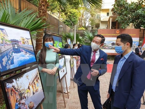 Promouvoir une passerelle culturelle entre le Vietnam et l'Egypte hinh anh 1