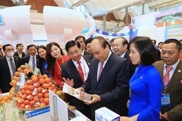 Le Premier ministre exhorte les cooperatives a mieux exploiter leurs potentiels hinh anh 2
