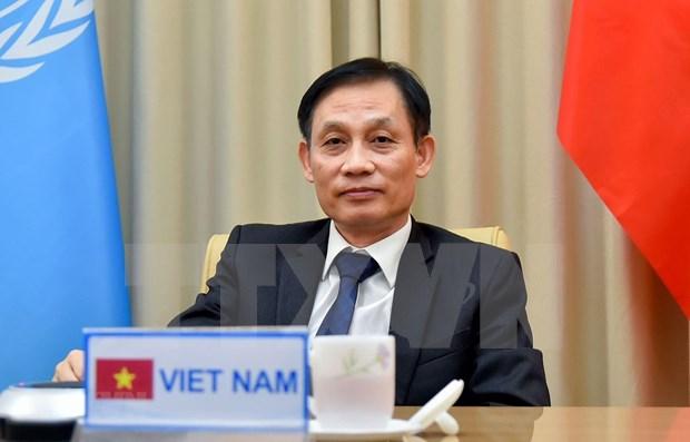 Proteger les interets nationaux, contribuer au maintien de la paix et de la securite internationale hinh anh 1