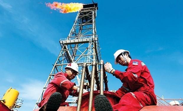 Petrole : PVEP maintient une production stable et sure au milieu du COVID-19 hinh anh 1
