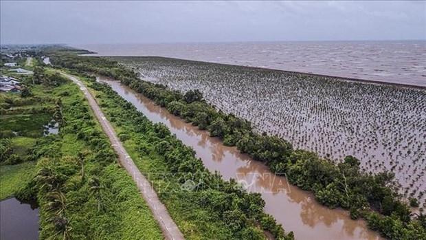Delta du Mekong : developpement durable pour s'adapter au changement climatique hinh anh 1