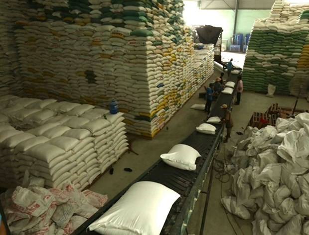 Riz: opportunites pour le Vietnam de maintenir les exportations stables vers les Philippines hinh anh 1