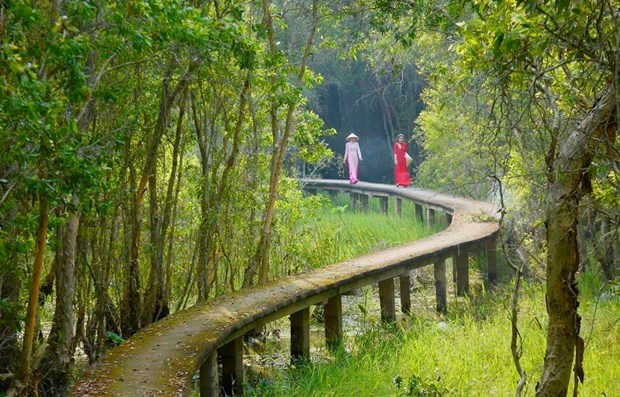 Journee mondiale de l'environnement: Conservation des ecosystemes dans le delta du Mekong hinh anh 1