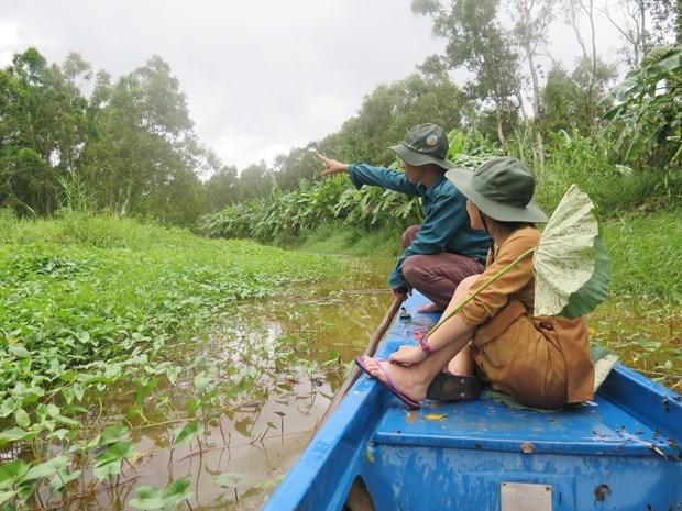Journee mondiale de l'environnement: Conservation des ecosystemes dans le delta du Mekong hinh anh 3