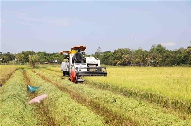 Des entreprises australiennes souhaitent investir dans l'agritech au Vietnam hinh anh 1