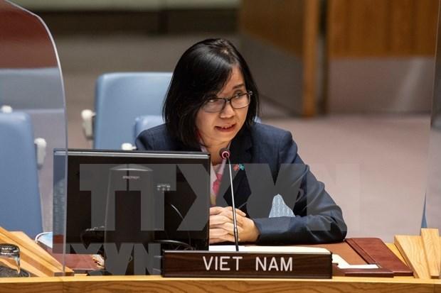 ONU : le Vietnam soutient les efforts diplomatiques pour accelerer la mise en oeuvre du JCPOA hinh anh 1