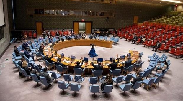Le Vietnam affirme sa position sur la condamnation de l'utilisation des armes chimiques hinh anh 1