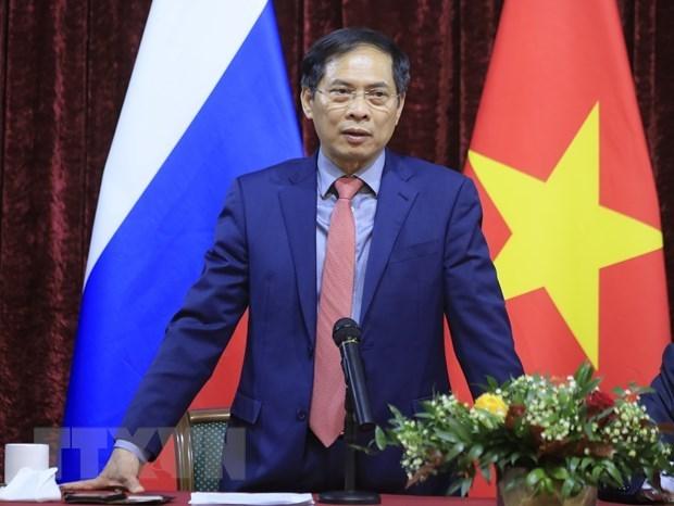 Le ministre des Affaires etrangeres Bui Thanh Son rencontre des Vietnamiens en Russie hinh anh 1