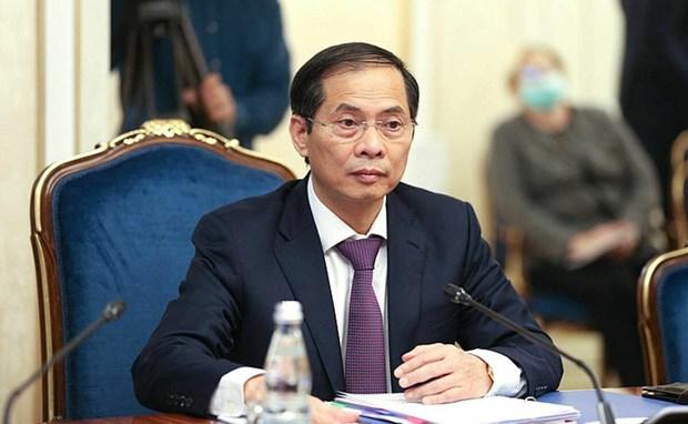 Le Vietnam, partenaire important et proche de la Russie dans la region Asie-Pacifique hinh anh 2