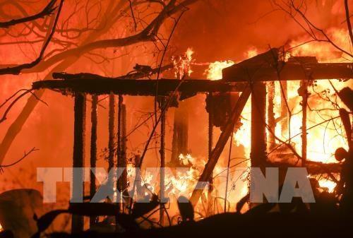 Il n'y a aucune information sur les victimes vietnamiennes de l'incendie de foret en Californie hinh anh 1