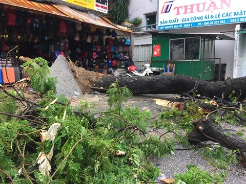 Passage du typhon USAGI: des rues de Ho Chi Minh-Ville inondees hinh anh 1