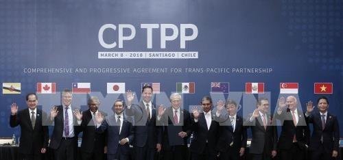 Le CPTPP profite enormement aux entreprises vietnamiennes hinh anh 1