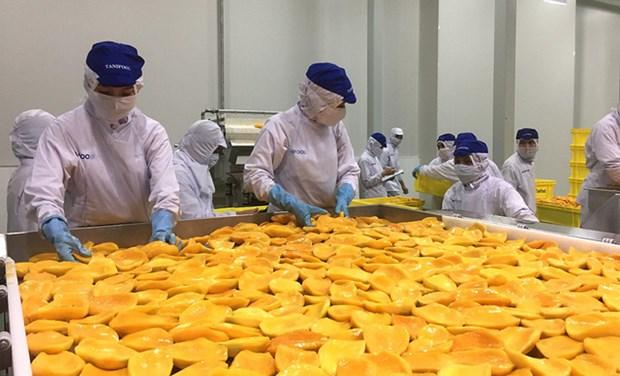 Ho Chi Minh-Ville: les exportations s'etablissent a plus de 6 milliards de dollars en 2 mois hinh anh 1