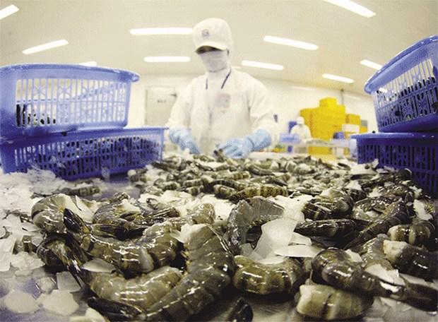 Exportations au Mexique: de nombreuses opportunites pour le Vietnam hinh anh 1