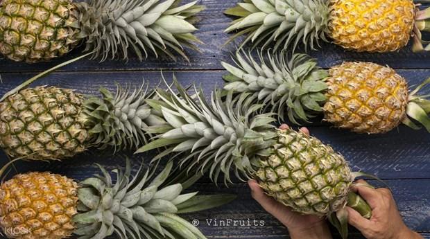 Les dirigeants singapouriens interesses par l'importation de fruits et legumes du Vietnam hinh anh 1