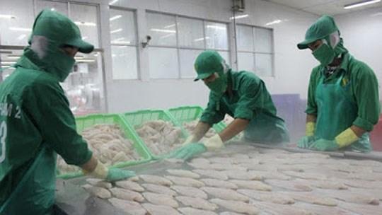 Les exportations de pangasius vers le Royaume-Uni augmentent de 70% hinh anh 1
