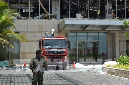 Aucune victime vietnamienne dans les attentats au Sri Lanka hinh anh 1