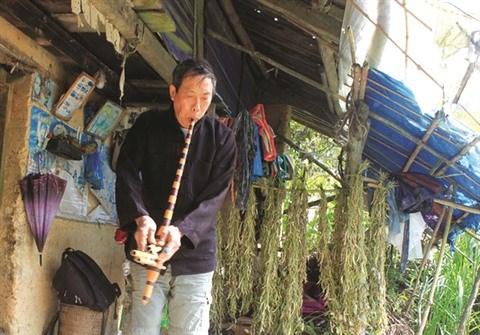 Le khen H'mong retentit loin des hauts plateaux du Nord hinh anh 1