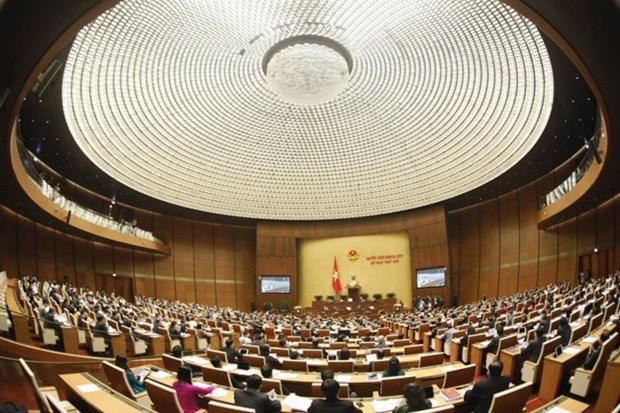 Les amendements de la loi sur l'education et le projet de loi sur l'architecture en debat hinh anh 1