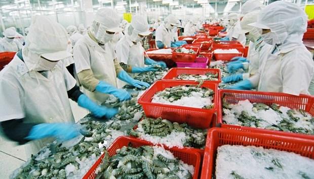 Exportations de crevettes au Japon: le Vietnam maintient sa position de leader hinh anh 1