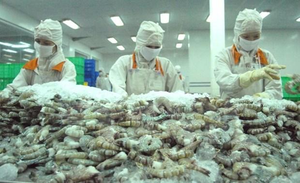 Soc Trang coopere avec Hiroshima pour construire une marque de crevettes propres hinh anh 1