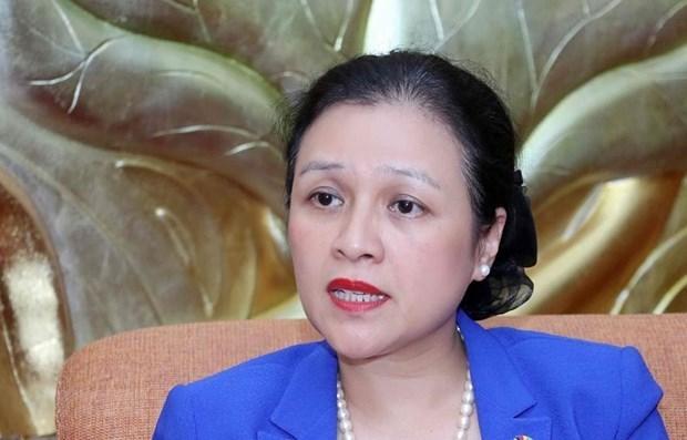 Le Vietnam assumera bien sa responsabilite au Conseil de securite des Nations Unies hinh anh 1
