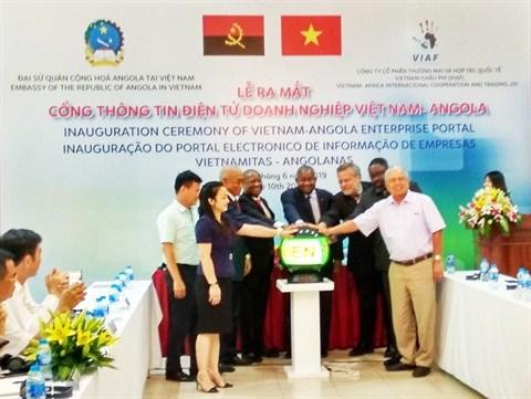 Lancement du portail electronique des entreprises Vietnam - Afrique hinh anh 1