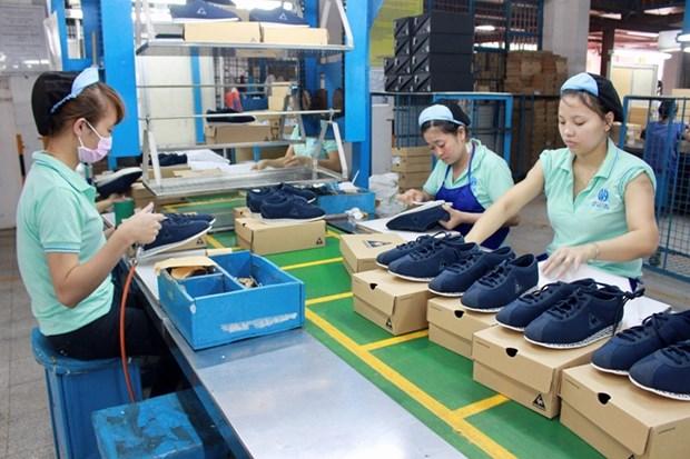 Cuir et chaussures: les exportations nationales poursuivent sur leur lancee hinh anh 1