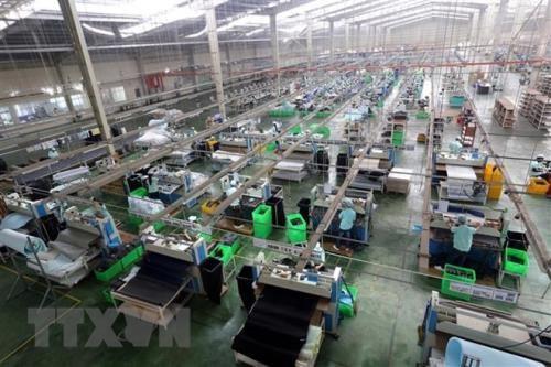 La cooperation economique entre le Vietnam et le Japon se developpe dans de nombreux domaines hinh anh 1