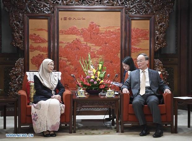 La Chine et la Malaisie intensifient leurs relations bilaterales hinh anh 1