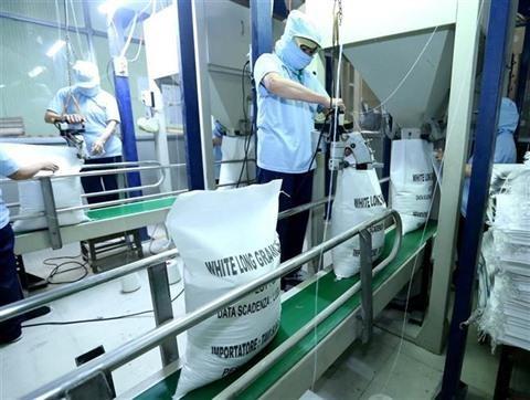 Perspectives pour le riz vietnamien en Chine hinh anh 1