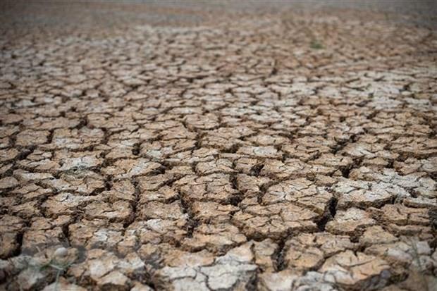 Le delta du Mekong sera confronte a une salinite plus severe et a des secheresses hinh anh 1